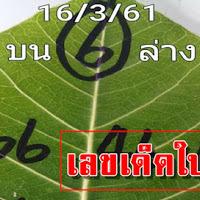 ให้มาแล้ว!! เลขเด็ดใบโพธิ์ สรุปบน-ล่าง งวดนี้ 16/03/61