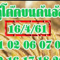 น่าติดตาม เลขเด็ด คู่โต๊ดบน ต้นอ้อ งวดวันที่ 16/04/61