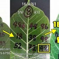 เลขเด็ด หวยใบโพธิ์ บน-ล่าง งวดวันที่ 16/5/61 (ผลงานเข้า 2 งวดซ้อน)