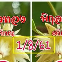 เลขดับบน-ดับล่าง หวยพิกุลทอง  งวดวันที่ 1/08/61